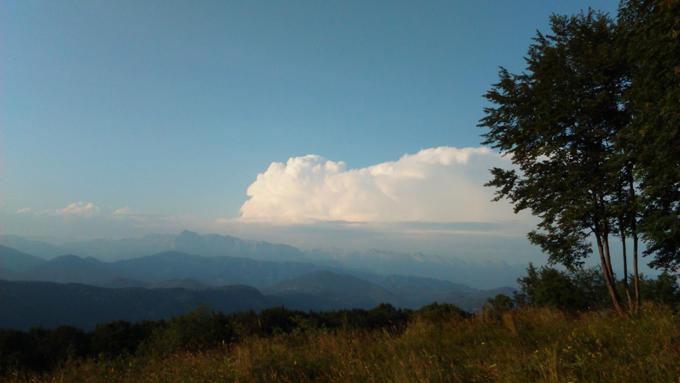 Gore v Goriških Brdih